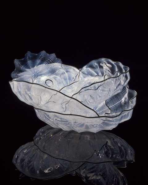 Dale Chihuly, White Smoke Seaform Set with Charcoal Lip Wraps, 2002, 26 x 46 x 28 cm