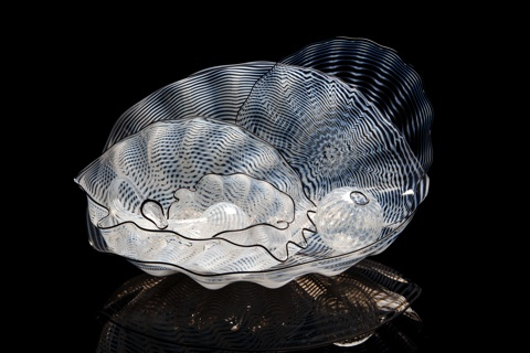 Dale Chihuly, Pearl Seaform Set with Onyx Lip Wraps, 2000, 26 x 48 x 41 cm