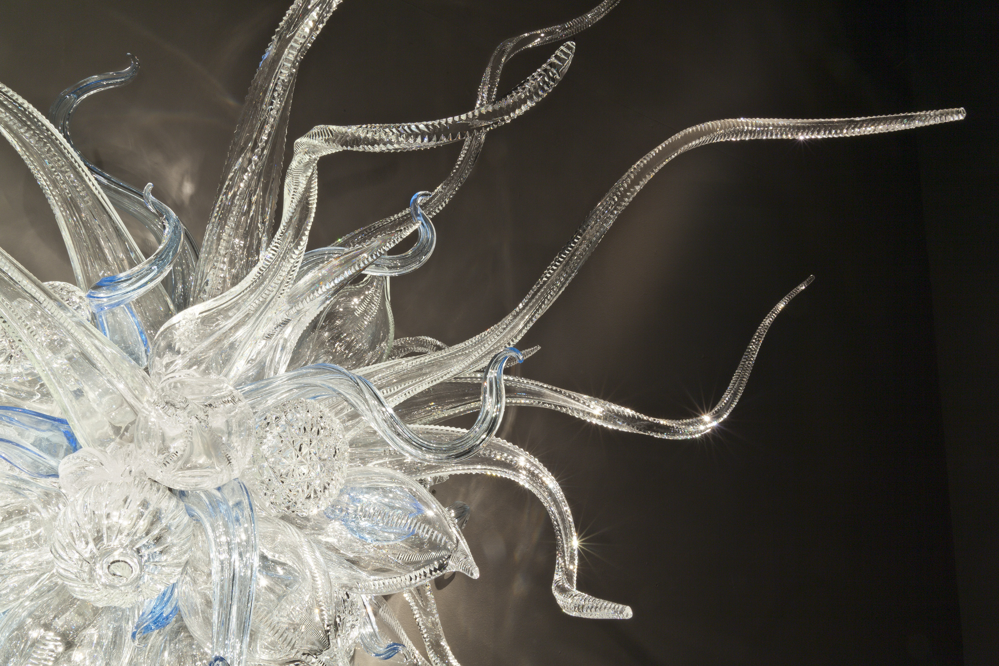 Dale Chihuly, Waterford Sconce (detail), 2011, 155 x 153 x 69cm