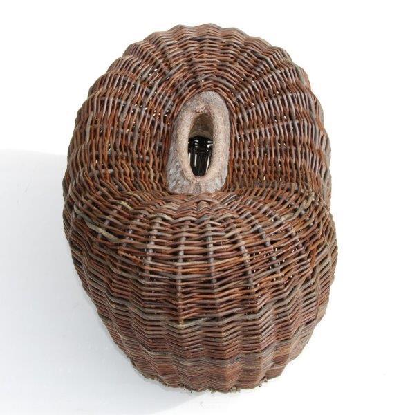 Joe Hogan, Aspen Pod, from aspen tree, 32 x 50 x 34cm