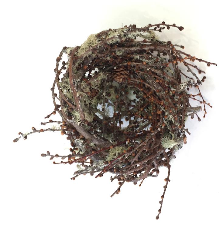 Joe Hogan, Nest LLI, lichen encrusted birch twigs, h10cm