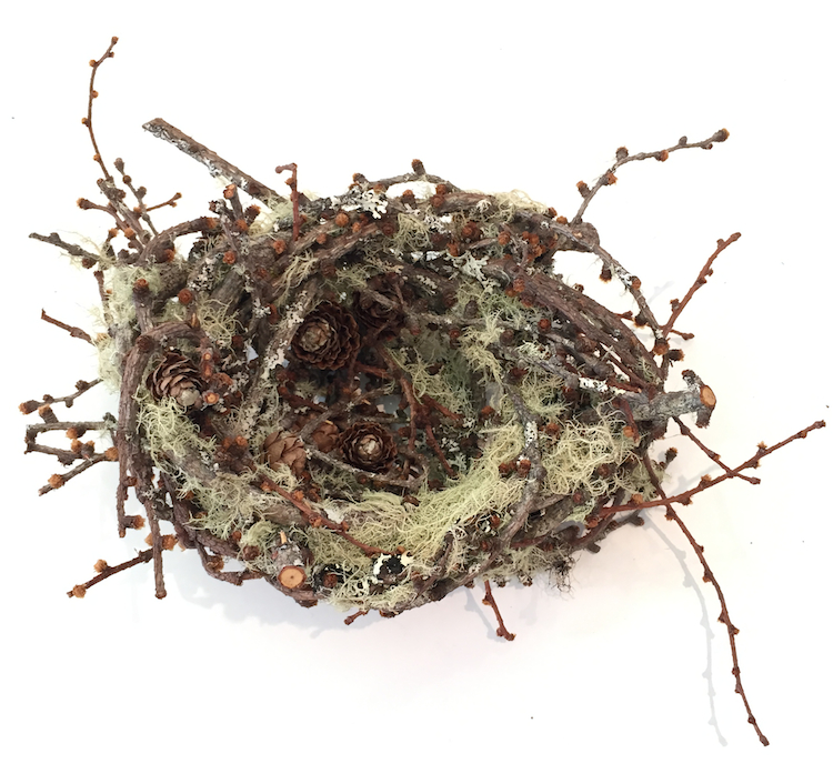 Joe Hogan, Nest MLI, lichen encrusted birch twigs, h10cm