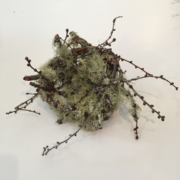 Joe Hogan, Nest SML, lichen encrusted birch twigs, h8cm