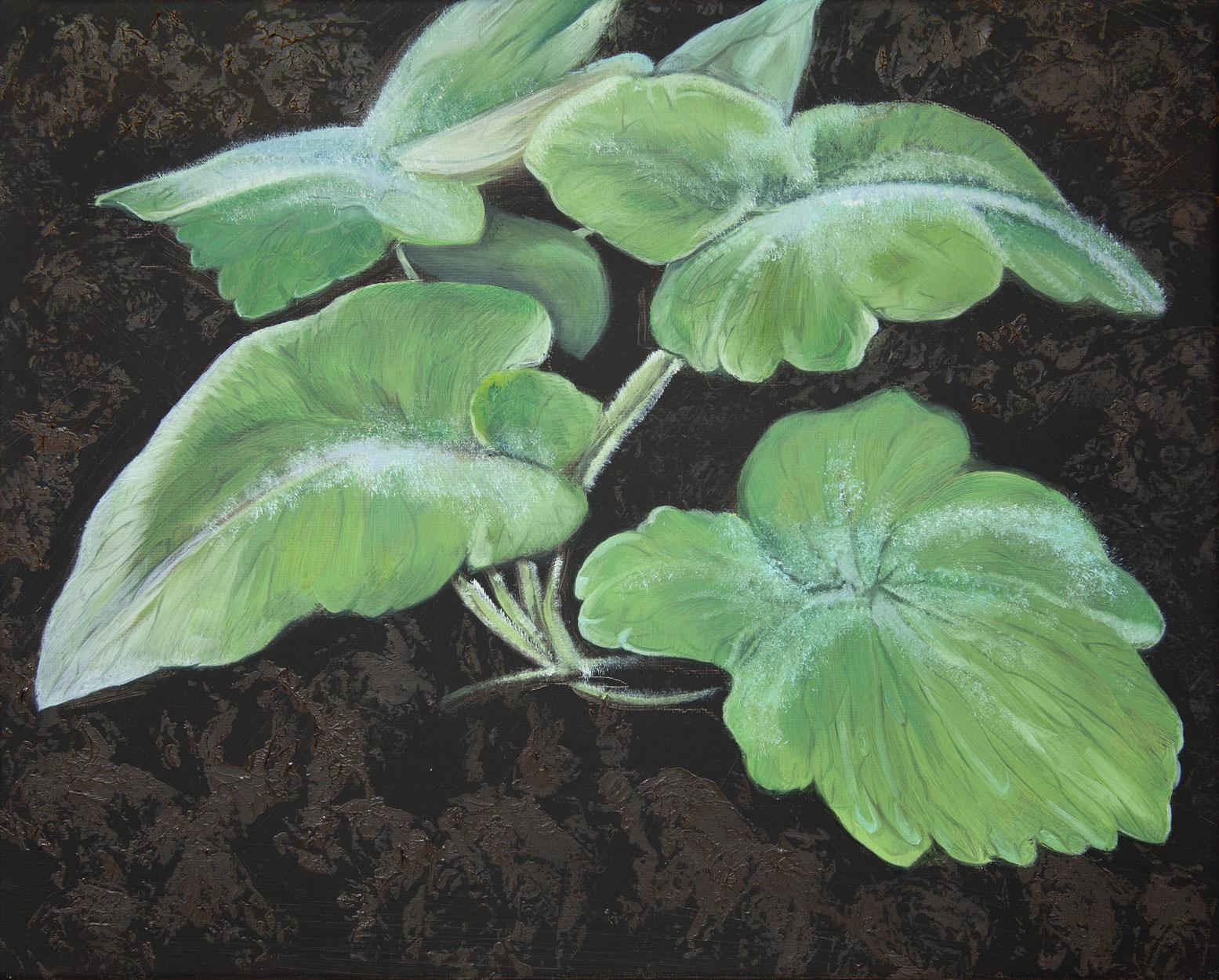 Bennie Reilly, Weed II, Botanic Gardens, Dublin, oil on canvas, 25x30cm