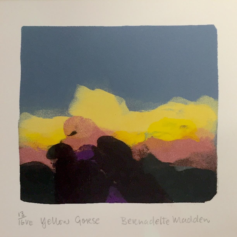 Bernadette Madden, Yellow Gorse, screen print, edition of 16, 10 x 10 cm unframed, 25 x 25 cm framed