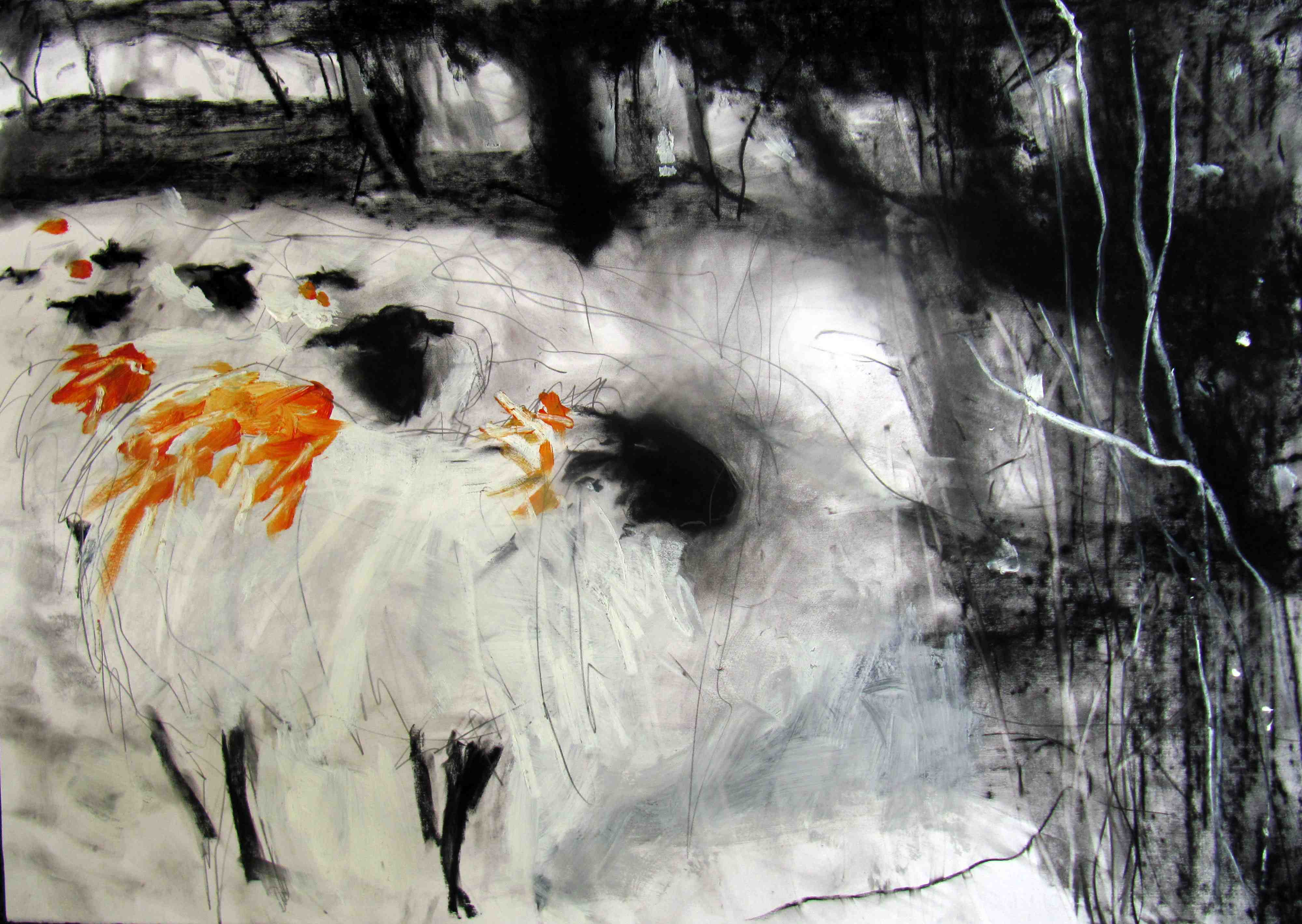 Margo Banks, Sheep from my Field 4, 70 x 100 cm