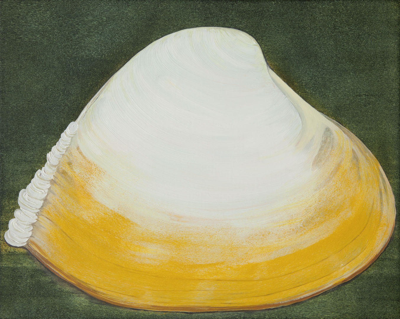 Bennie Reilly, Curled Clam, oil on canvas, 20x25cm